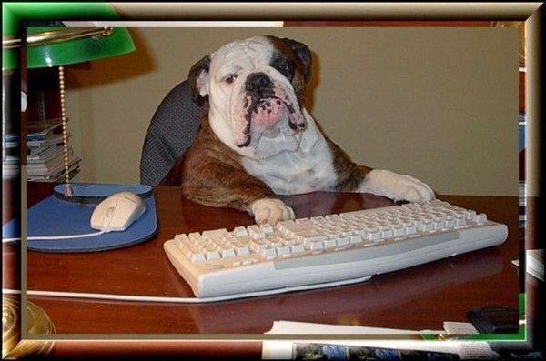 Un 'pro' du clavier... Comme moi! Mdr...