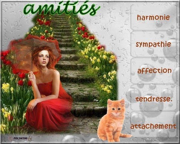 Un très joli KDO d'Amitiés de BRIGITTE/FDL54290...